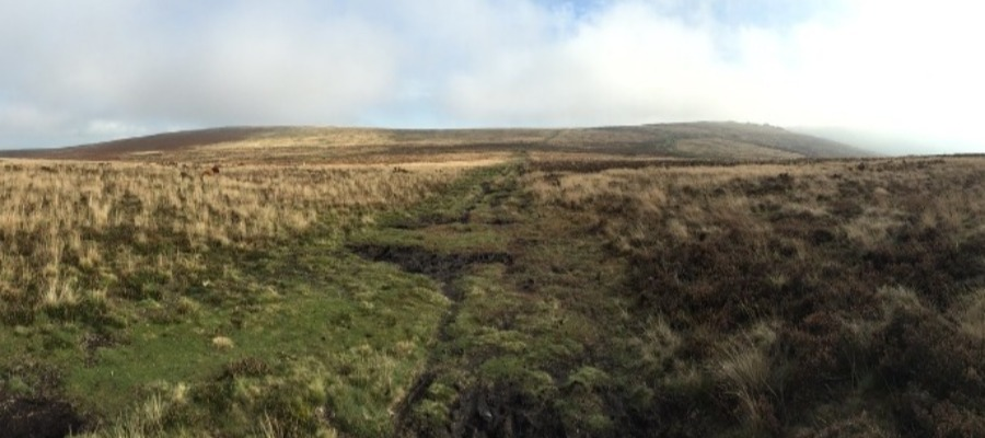 UK Walks: DartMoor Bogs (Laughter Tor, Bellever Tor)