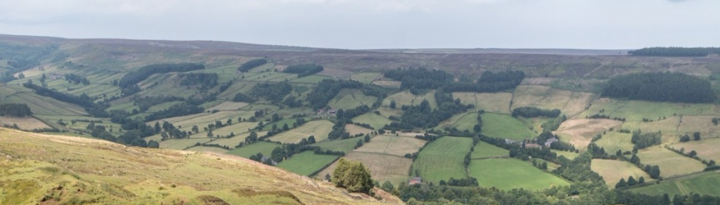 UK Walking Locations - The North York Moors National Park