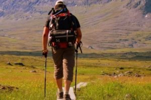 Expert Advice: Hiking, Trekking or Walking Poles – How To Choose?