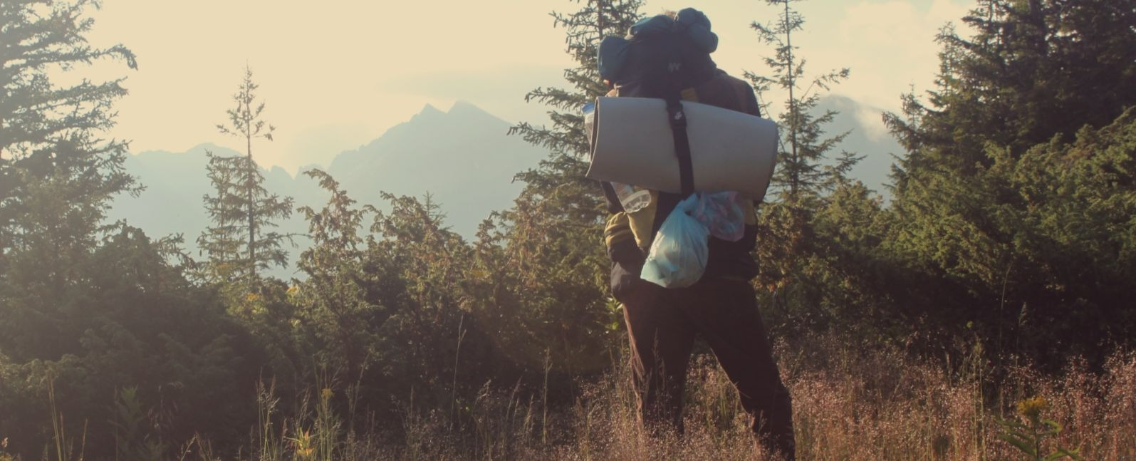 How to Choose The Perfect Sleeping Bag For Your Night in the Wilderness